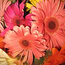 Gerbera Daisy Bouquet by jsmusic