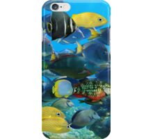 Colorful tropical fish schooling iPhone Case/Skin