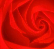 Rose Art by ezindo