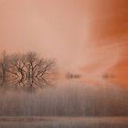 Dream ! by Elfriede Fulda