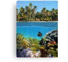 Colorful marine life underwater and tropical coast Canvas Print