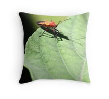 Insect  Throw Pillow