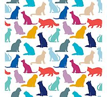 Multi-coloured Cat Pattern Photographic Print