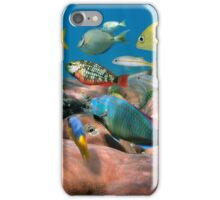 Colorful tropical fish schooling over coral iPhone Case/Skin