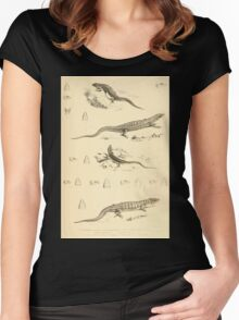 The Reptiles of British India by Albert C L G Gunther 1864 0499 Tropidophorus Microlepis, Euprepes Rufescens, Monticola, Olivanceus, Mabowa Quadrilineata, Mabouia Chinensis Women's Fitted Scoop T-Shirt