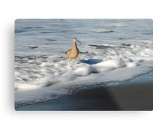 Shore Suds Metal Print