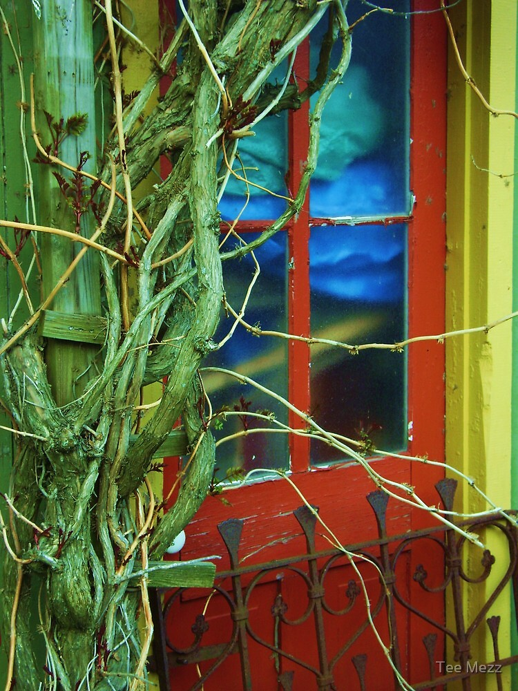 The door to yesterday ... by Tee Mezz