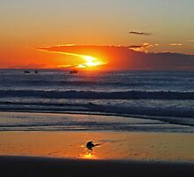 A Narooma Sunrise by Evita
