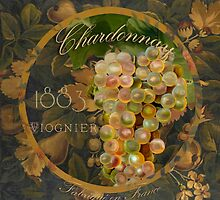 Wines of France Chardonnay by mindydidit