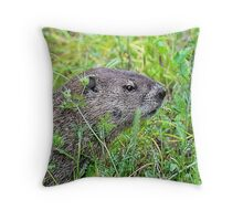Groundhog day Throw Pillow