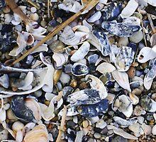 She Sells Seashells by Tee Mezz