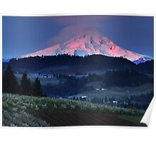 Dawn in the Orchards, Mt. Hood, Oregon Poster