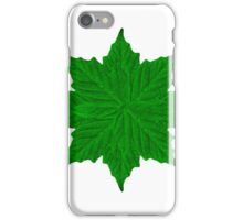 Decorative Ornament Isolated Plants iPhone Case/Skin