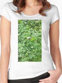 Bumble bee on a blossom Women's Fitted Scoop T-Shirt
