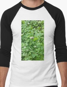 Bumble bee on a blossom Men's Baseball ¾ T-Shirt
