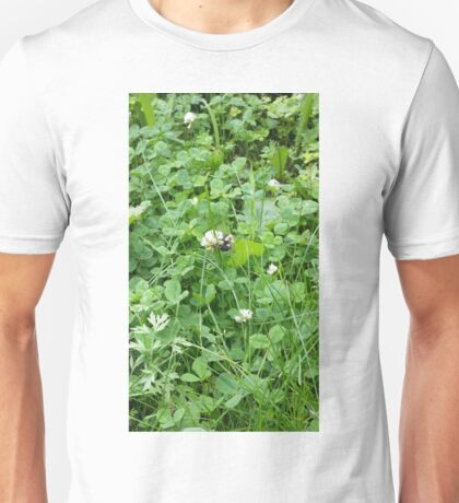 Bumble bee on a blossom Unisex T-Shirt