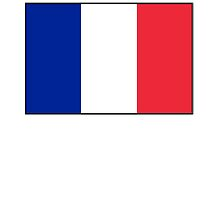 FRANCE, FRENCH, French Flag, Flag of France, Tricolour, Storming of the Bastille, Liberté, Égalité, Fraternité, Pure & simple by TOM HILL - Designer
