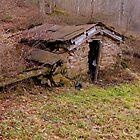 Built In  by Paul Lubaczewski