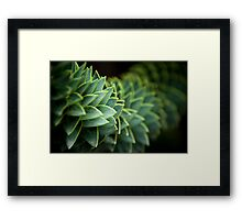 I shall call her Spiky and she will be mine and she shall be my Spiky Framed Print