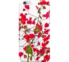 Red petals flowers iPhone Case/Skin