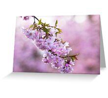 Spring Blush Greeting Card