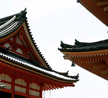 Temple Curves (Tokyo) by Bryan W. Cole