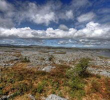 Burren Landscape View by John Quinn