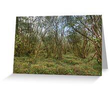 Burren Forest Greeting Card