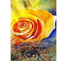 Yellow Rose Express Photographic Print