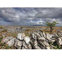 Burren Wall Photographic Print