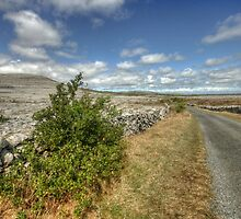 Rural Clare road by John Quinn