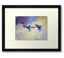 Sky Birds Framed Print