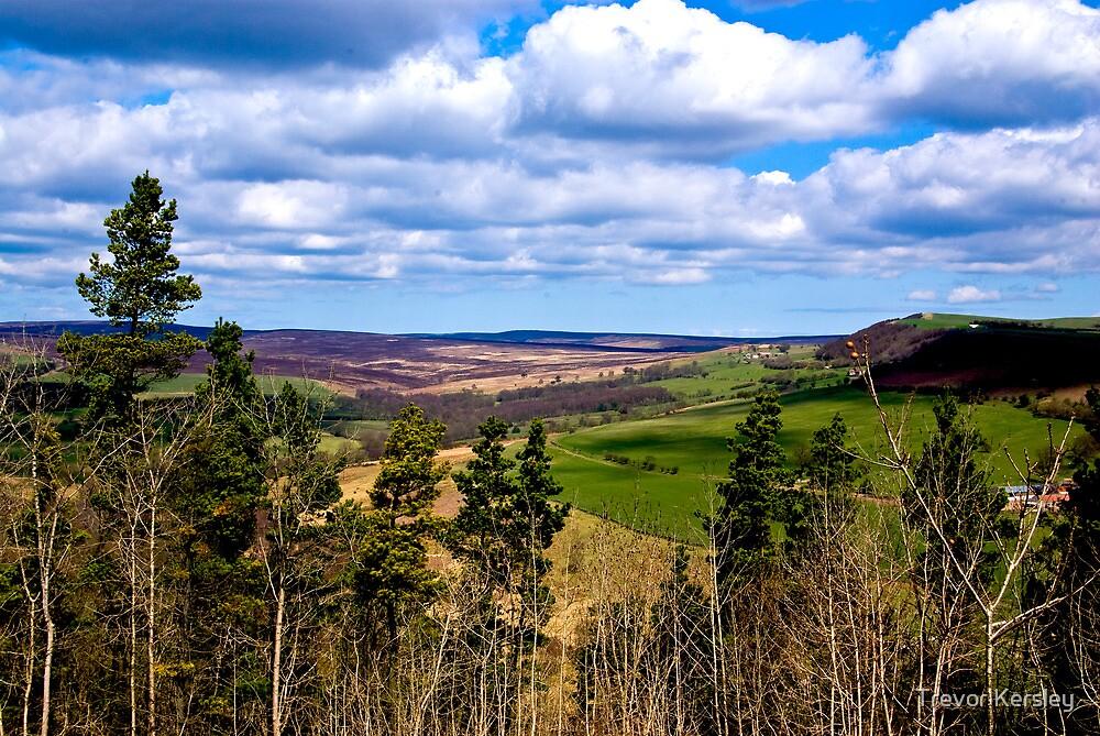 View of Pockley Moor. by Trevor Kersley
