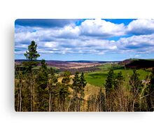 View of Pockley Moor. Canvas Print
