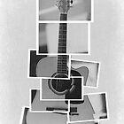 The Anatomy of a Guitar by joshbrandon