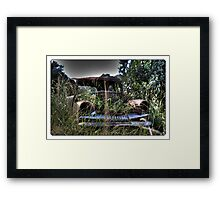 Beauty of yesteryear discarded Framed Print