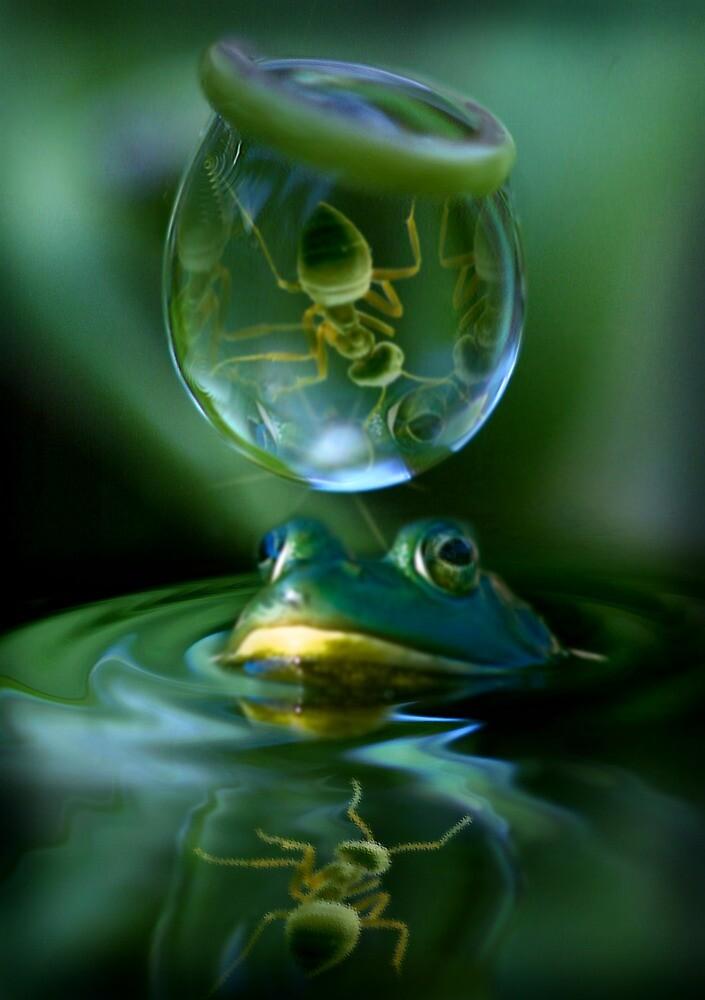 PONDER by Cliff Vestergaard