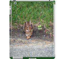 Watership Watcher iPad Case/Skin