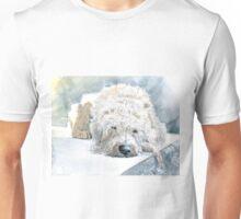 Labradoodle Naptime Unisex T-Shirt