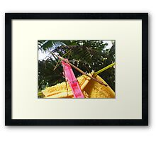 Hung Up Stick Insect  Framed Print