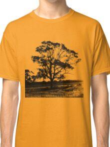 Goondiwindi Tree at Sunset Classic T-Shirt