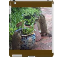 Inspection in the produce aisle iPad Case/Skin