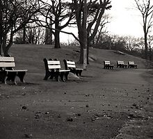 Lonely Benches by acarr