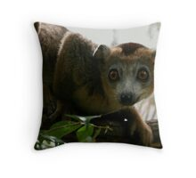 lounging in the canopy Throw Pillow
