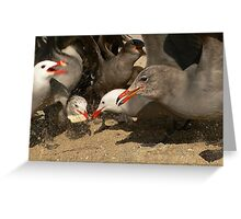 Feeding Frenzy! Greeting Card