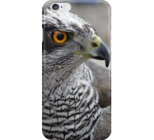 Goshawk iPhone Case/Skin