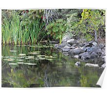 A Tranquil Bay On The Moria River Poster
