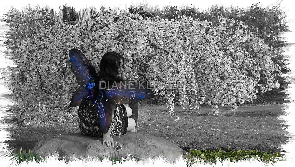 Fairy Wishes by DIANE KLEVECKA