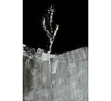 0022 - BrushAndInk - Blade Gone Fluff Photographic Print