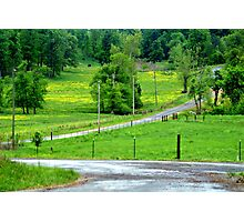 A little bit country.... Photographic Print
